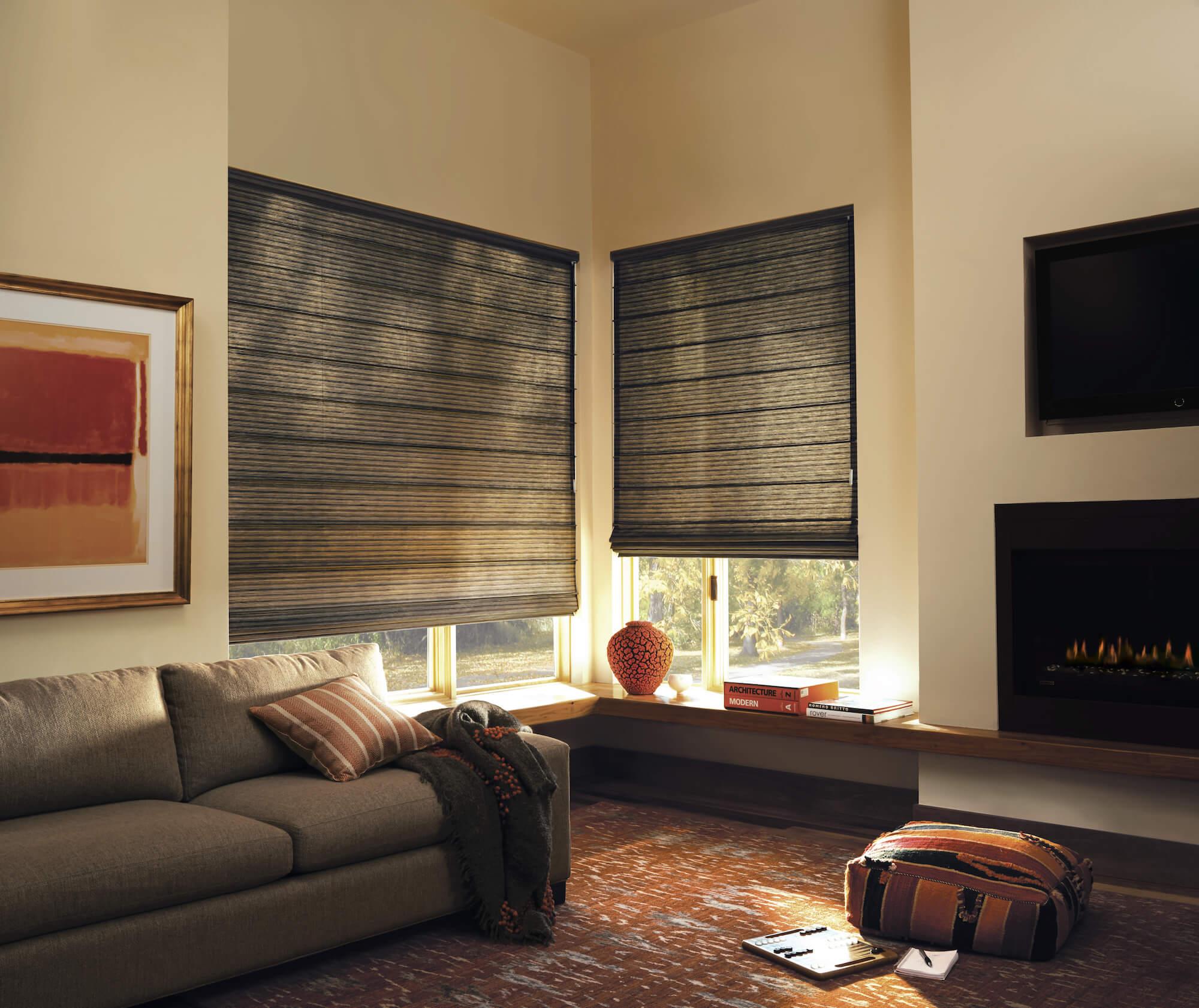 Design Studio Roman Shades in living room