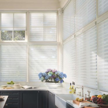 Alustra Silhouette Window Shadings