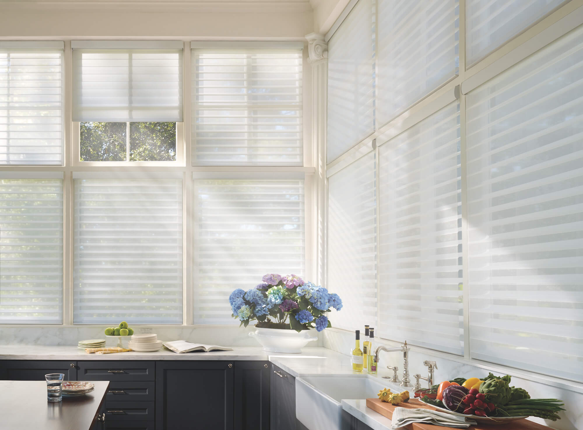 Alustra Silhouette Window Shadings