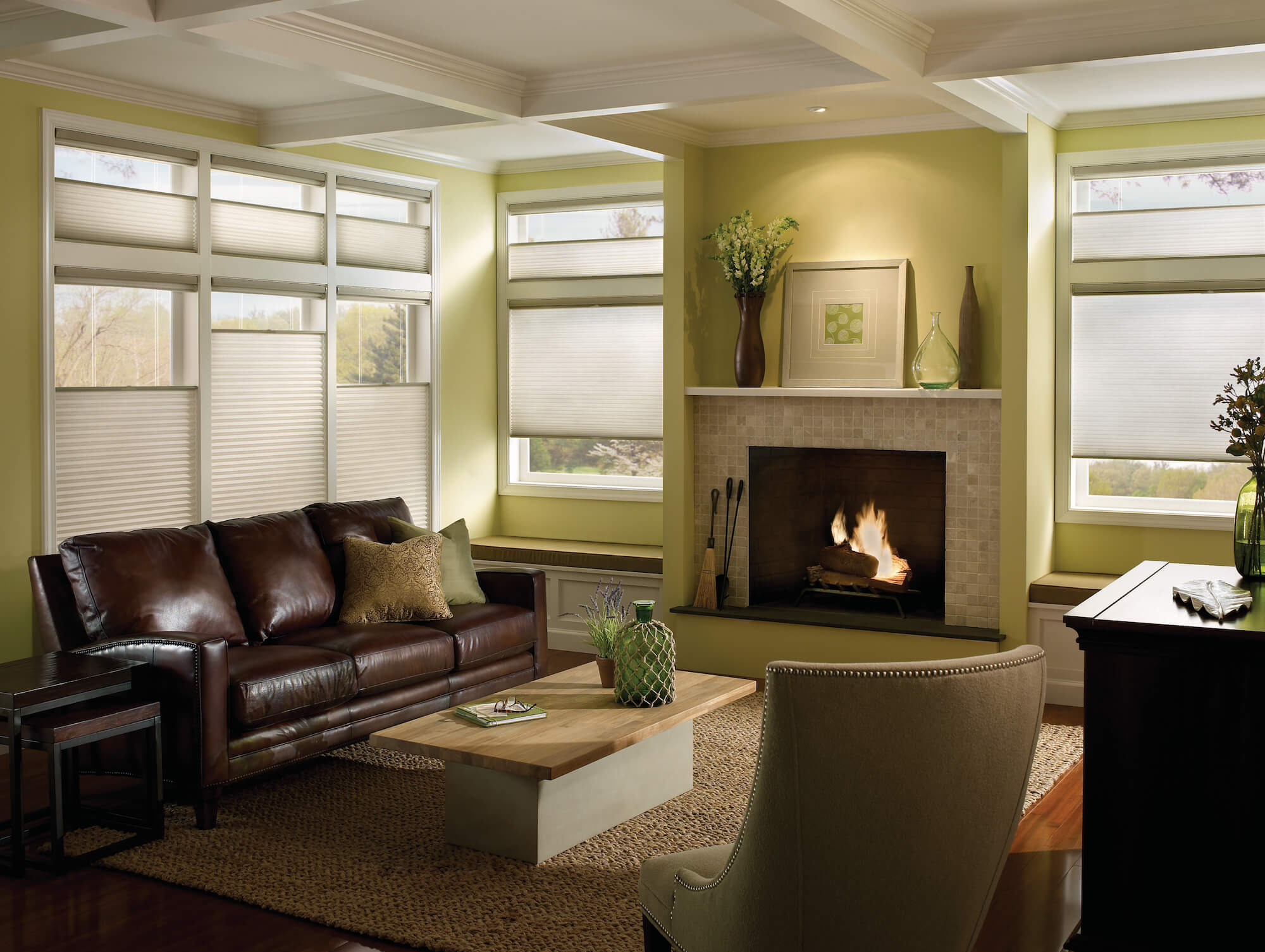 top-down bottom-up Applause Honeycomb shades in living room