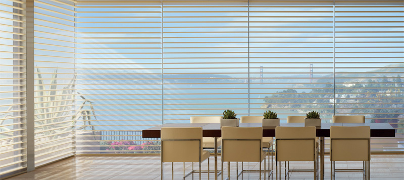 Silhouette shadings commercial project with San Francisco view