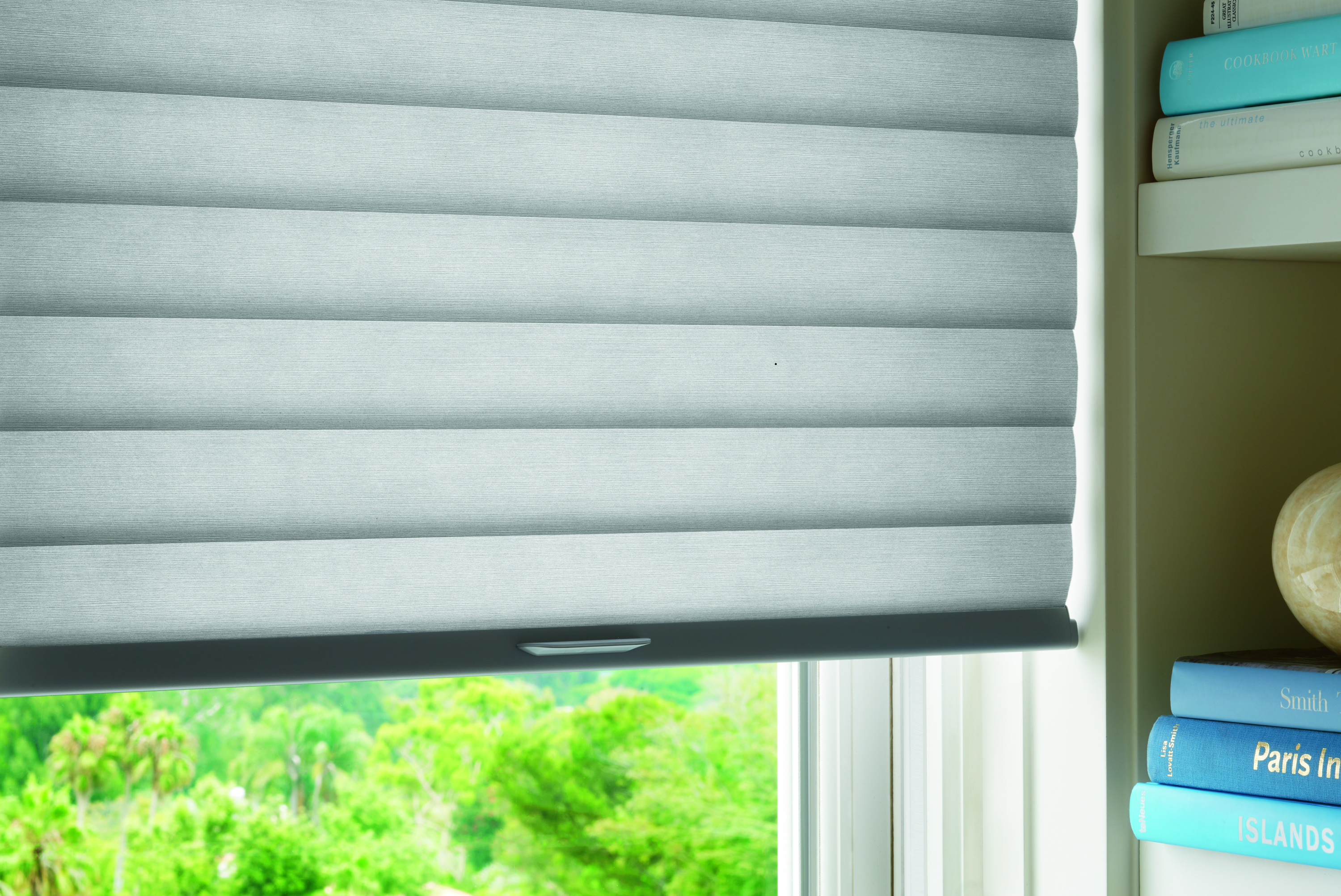 Hunter Douglas Sonnette Cellular Roller Shade with LiteRise system